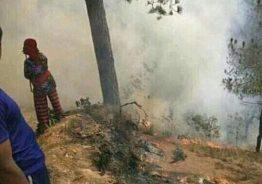 रुरुको भटकुवा बेलचौर जंगलमा आगलागी, नियन्त्रण प्रयास जारी।
